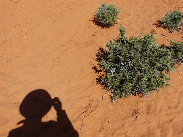 Desert sand shadow, people.