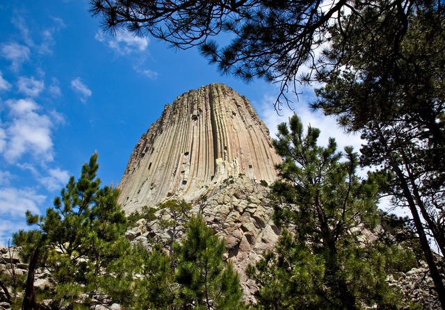 Devils tower trees wyoming, architecture buildings.