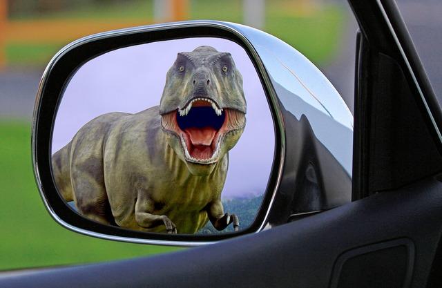 Dinosaur mirror wing mirror, transportation traffic.
