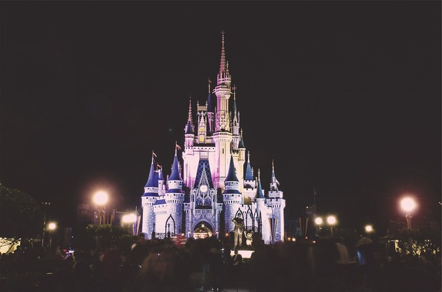 Disney land castle night, architecture buildings.