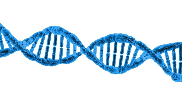 Dna biology science, science technology.