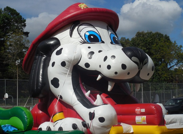 Dog carnival ride animal, animals.