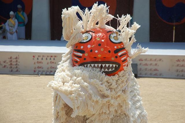 Dog costume traditional, animals.