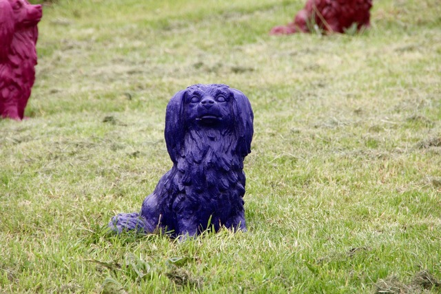 Dog park dog decoration, animals.