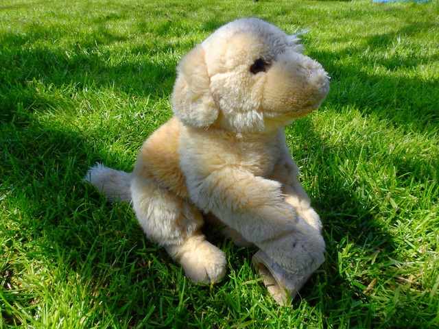 Dog stuffed animal knuffig, animals.