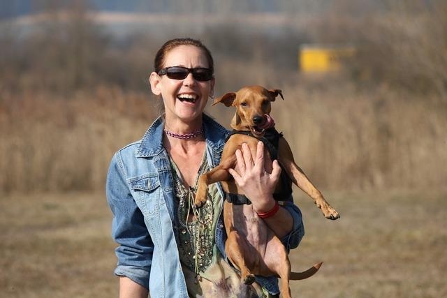 Dog woman mistress, animals.