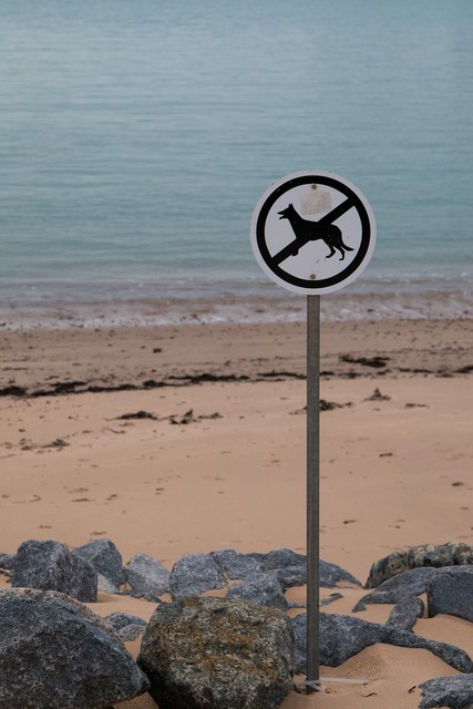 Dogs prohibited beach shield, travel vacation.