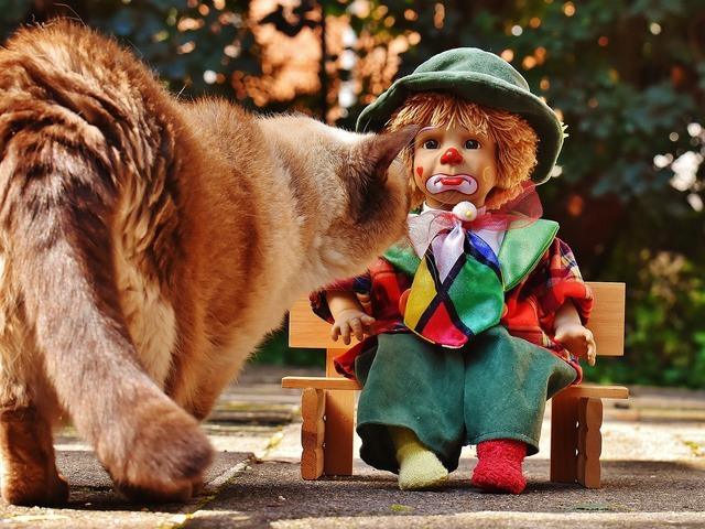 Doll clown sad, emotions.