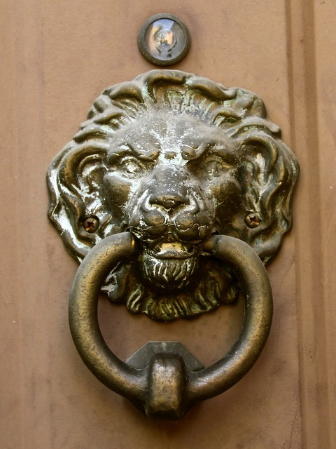 Door knocker lion head vintage.