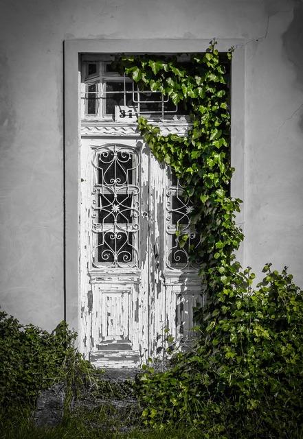 Door plant building, nature landscapes.