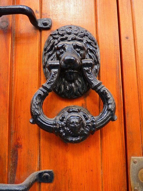 Door thumper lion head.