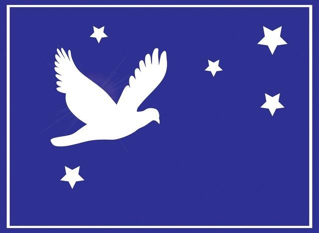 Dove bird peace, animals.