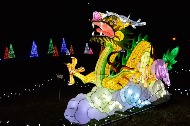Dragon festival of lights holiday.