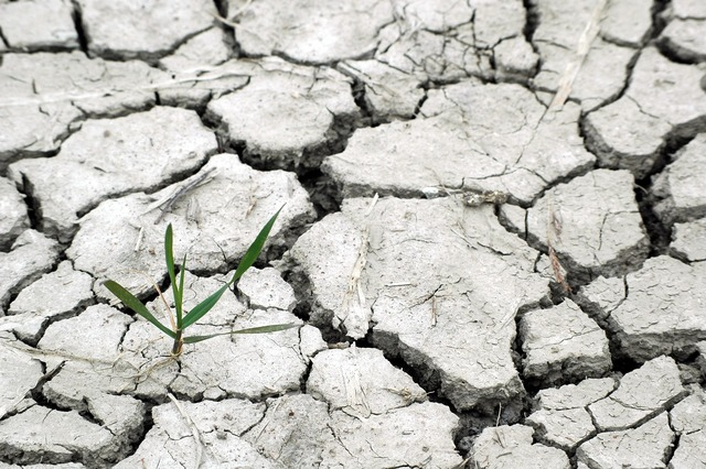 Drought responsibility we.