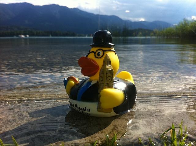 Duck lake mountains.