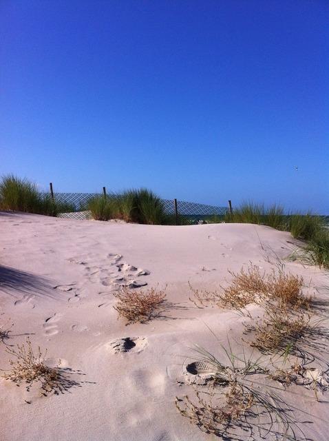 Dune beach north sea, travel vacation.