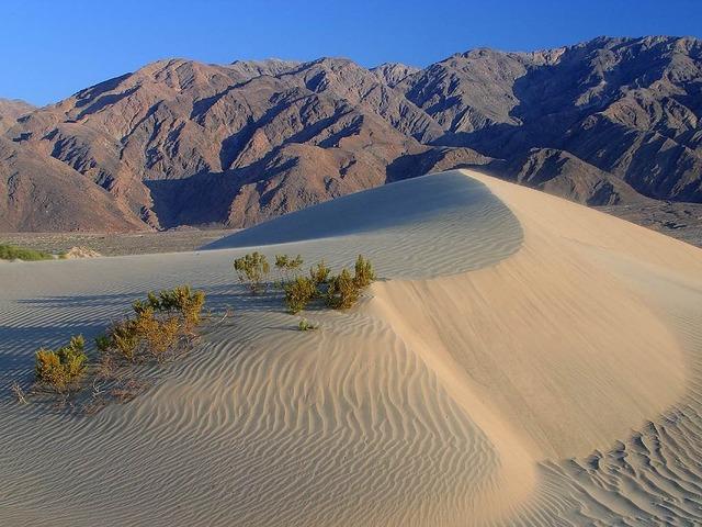 Dunes desert death valley.