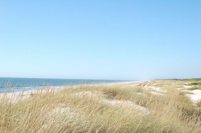 Dunes dune ocean, travel vacation.