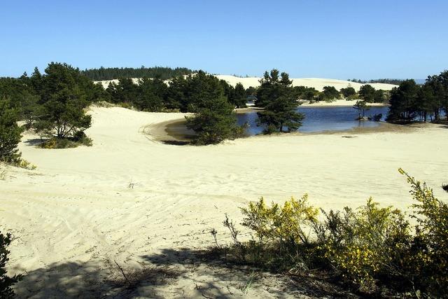Dunes national park sand hills.