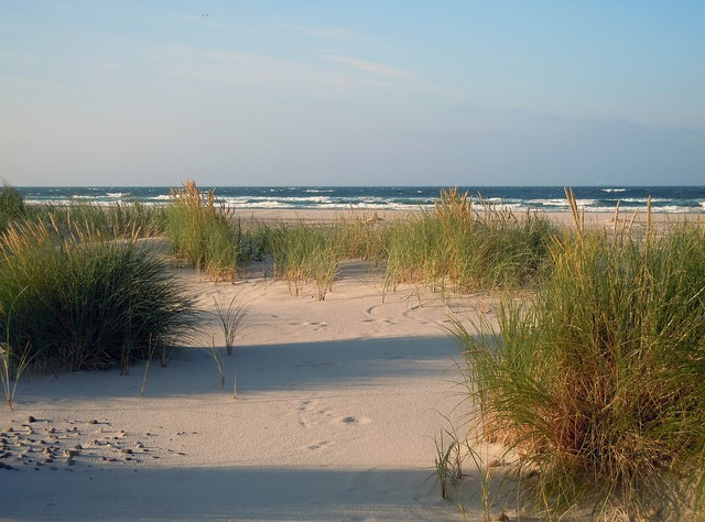 Dunes sand beach, travel vacation.