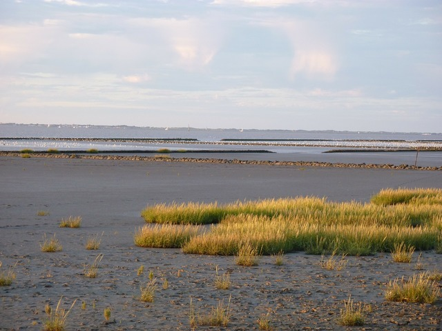 Ebb tides water, travel vacation.