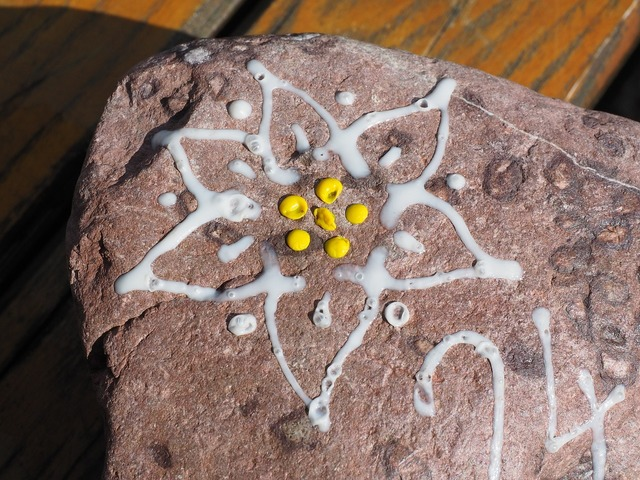 Edelweiss stone white.