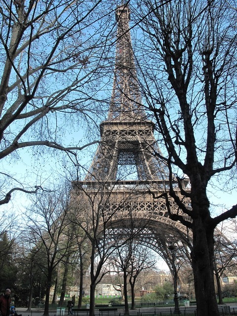 Eiffel tower trees branches, places monuments.