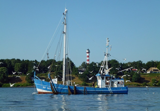 Elbe fischer fishing vessel.