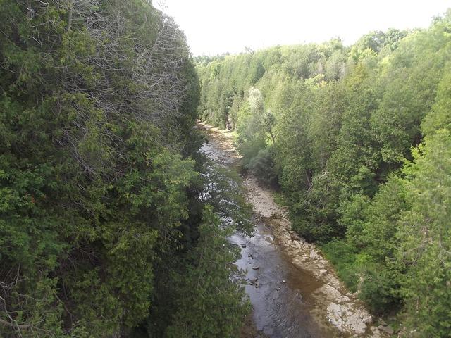 Elora river gorge.