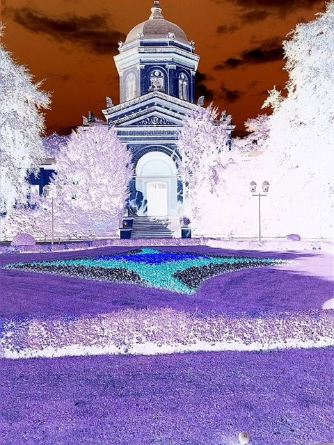 False color inverted infra red.