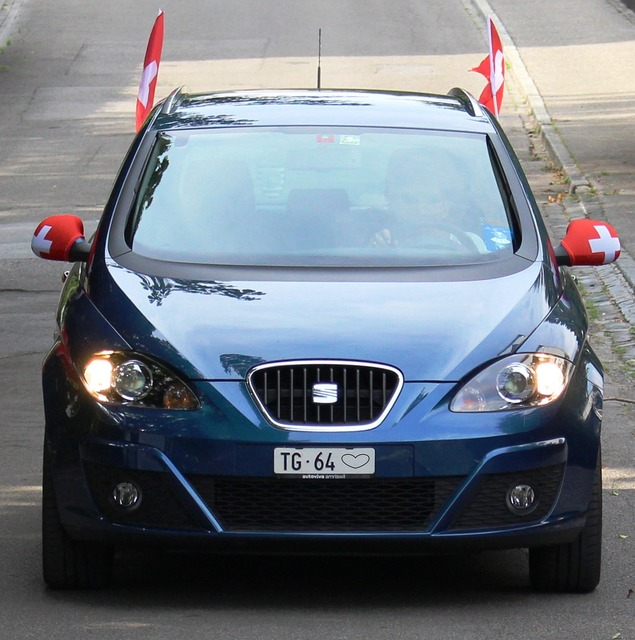 Fanartikel flags and pennants auto.