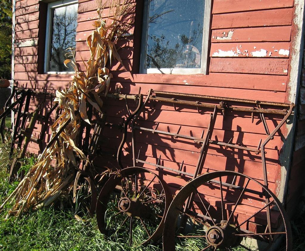 Farm country corn.