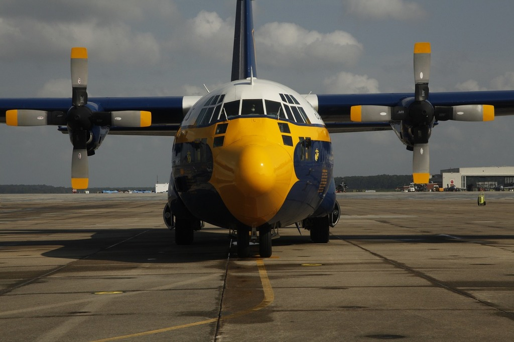 Fat albert airplane blue angels.