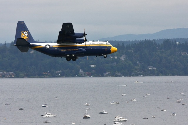 Fat albert airplane blue angles.