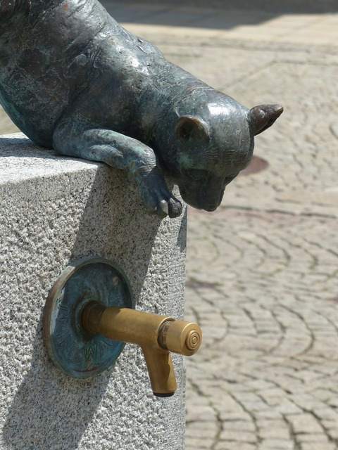 Faucet fountain freilassing, animals.