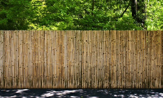 Fence bamboo outdoors, nature landscapes.