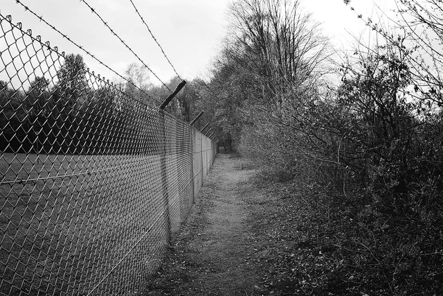 Fence barbed wire metal.