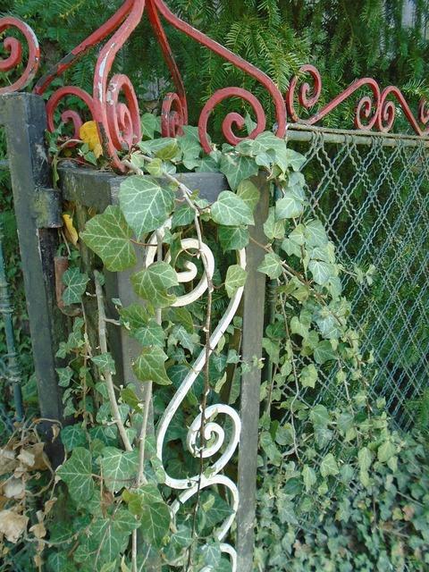 Fence column pole, nature landscapes.