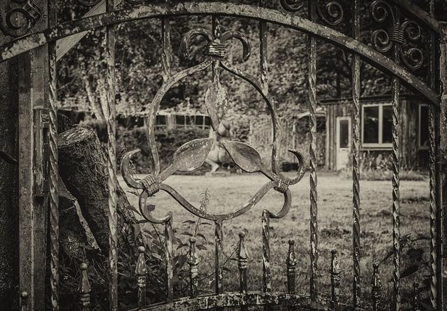 Fence iron wrought iron.