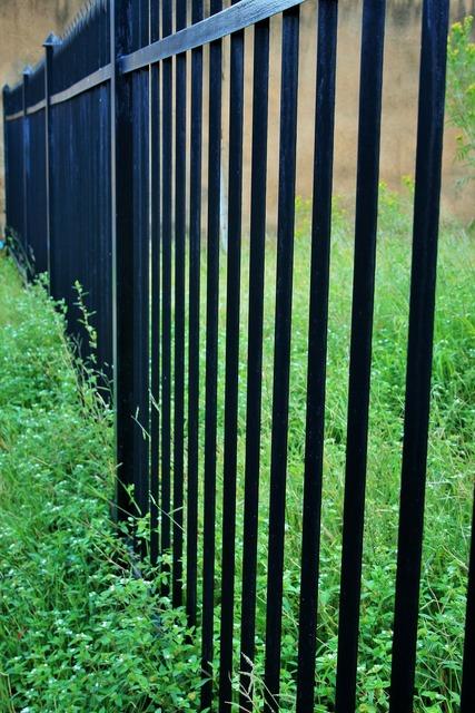 Fence palisade black, nature landscapes.