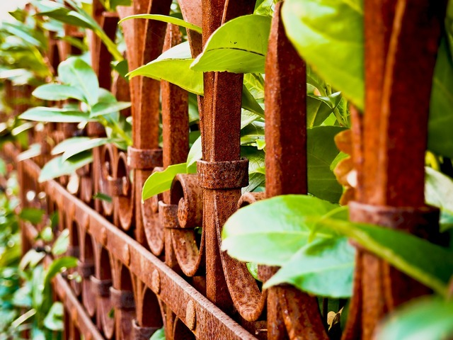 Fence stainless metal, nature landscapes.