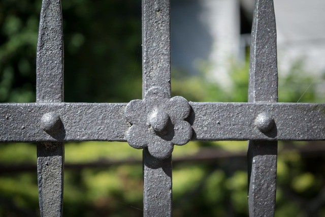 Fence wrought iron metal.