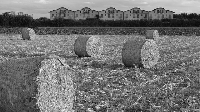 Field straw bales campaign.