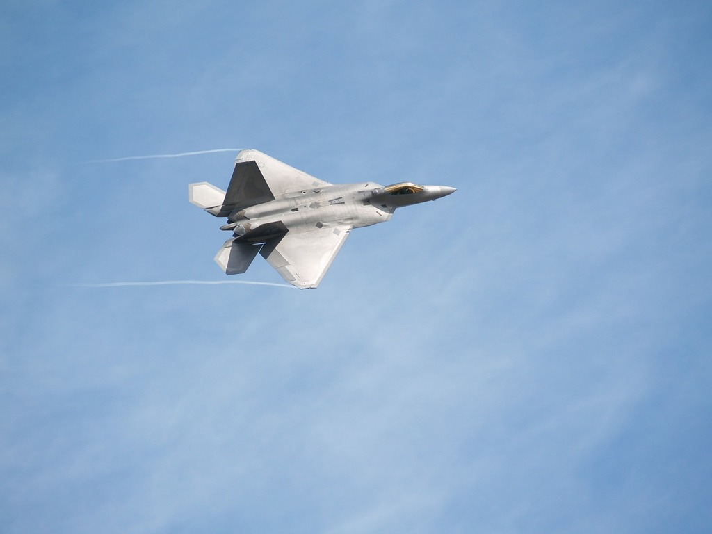Fighter airplane raptor.