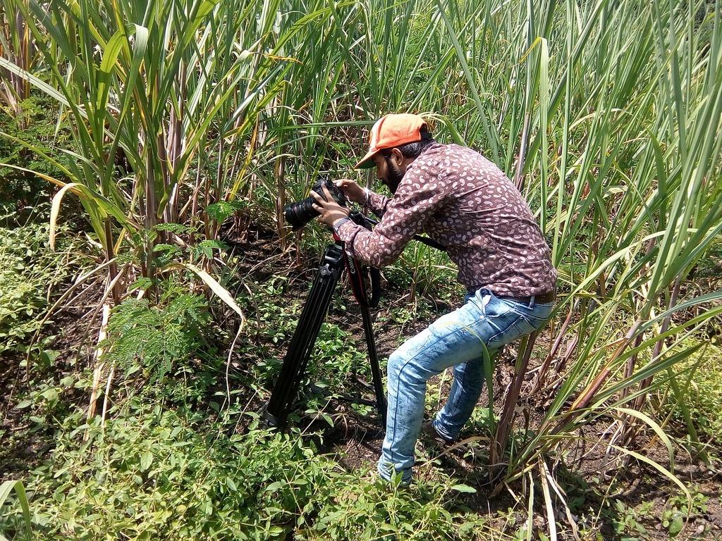 Filmmaker video filmmaking.