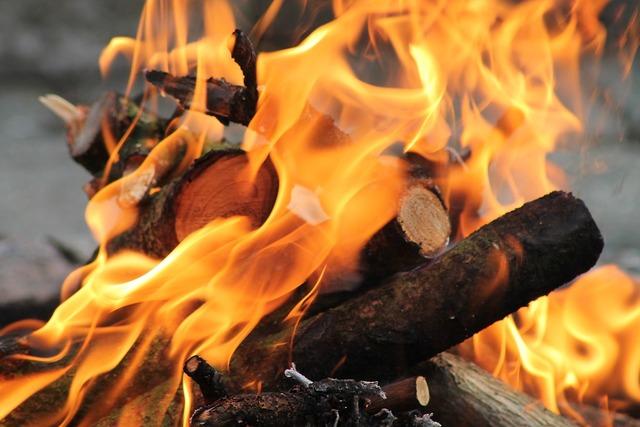 Fire bonfire burn.