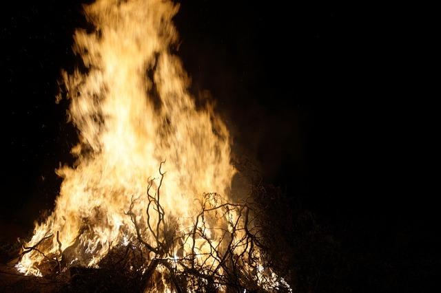 Fire burning bonfire.