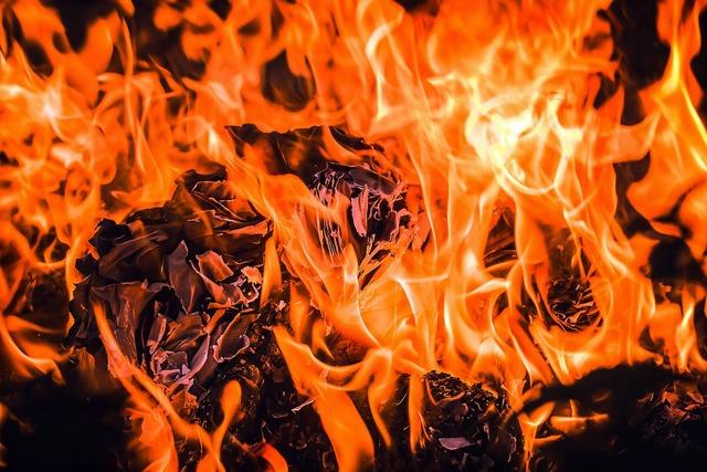 Fire embers flame.