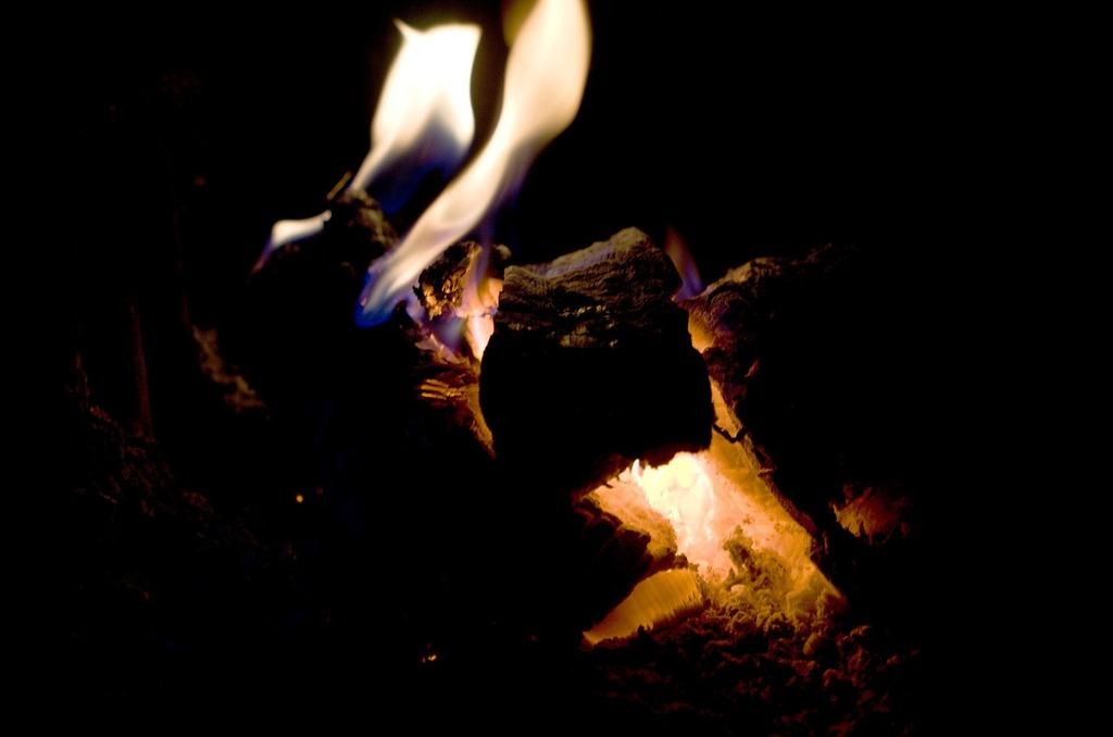 Fire flame burn.