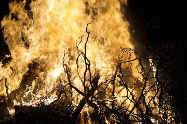 Fire flames bonfire.